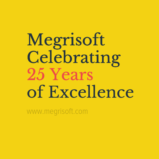 Megrisoft 25th Birthday